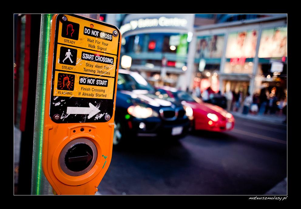 Do Not Cross, Start Crossing, Dundas Square, Toronto, Ontario, Canada