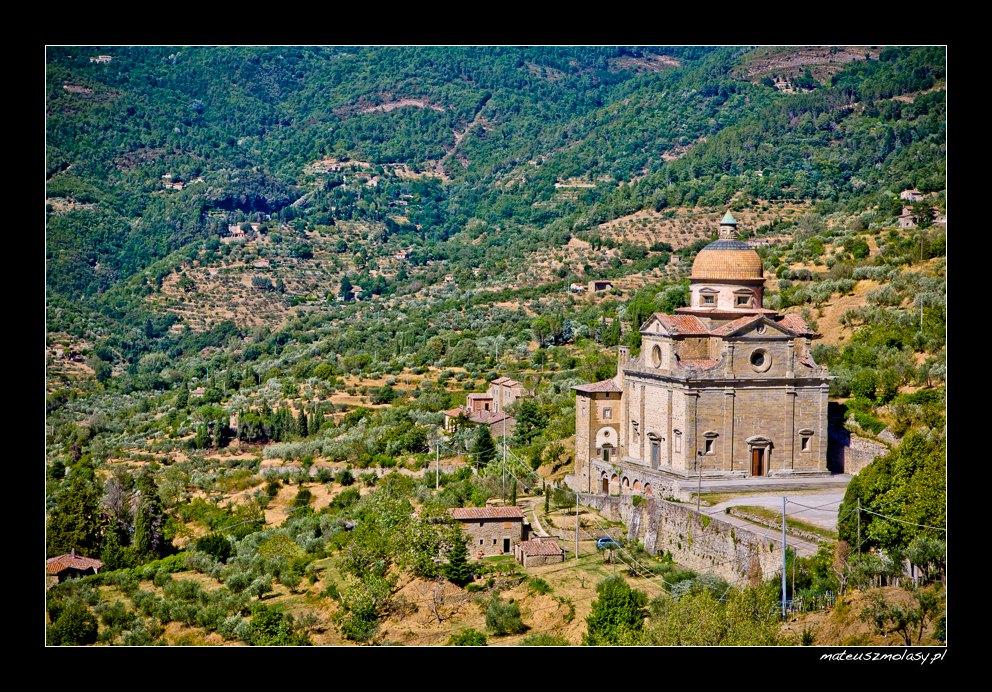 Vineyards, Cortona, Tuscany, Italy