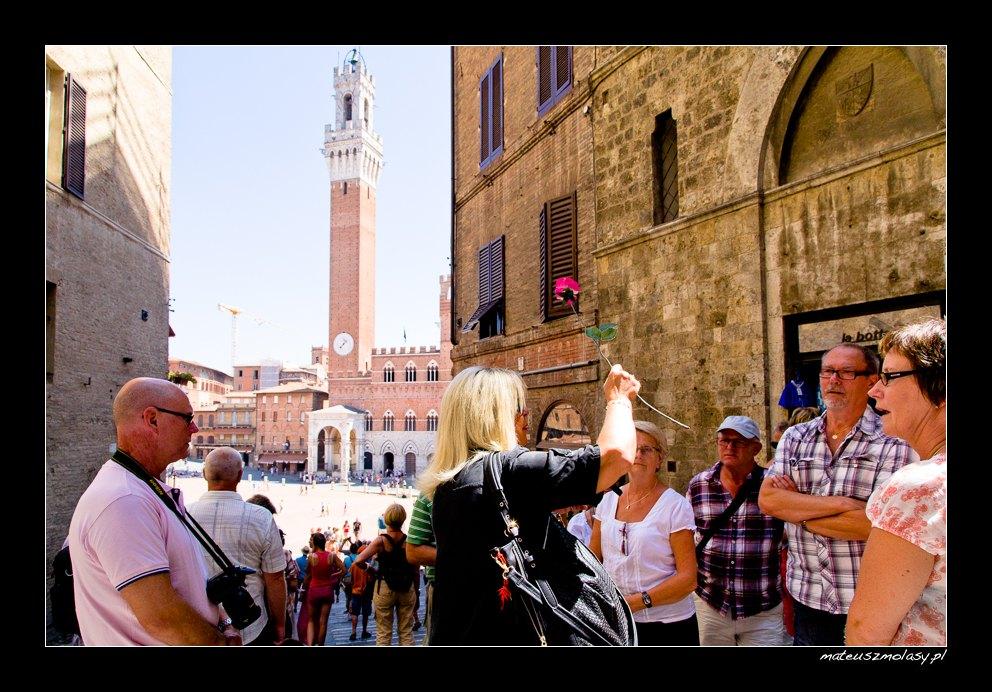 Guided Tour, Siena, Tuscany, Italy