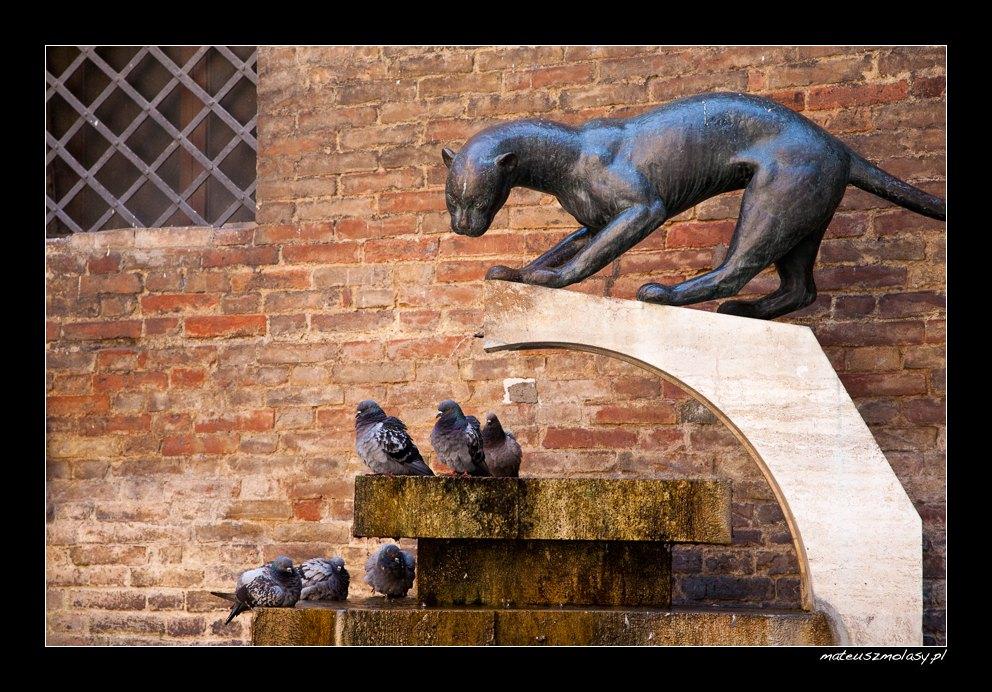 Hunting, Siena, Tuscany, Italy